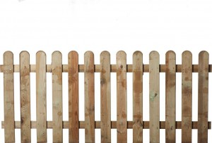 dreveny-plot-21